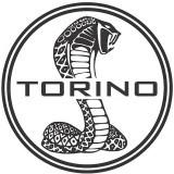 torino420